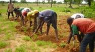 Projet Neer-Tamba : Des cailloux pour lutter contre la pauvreté