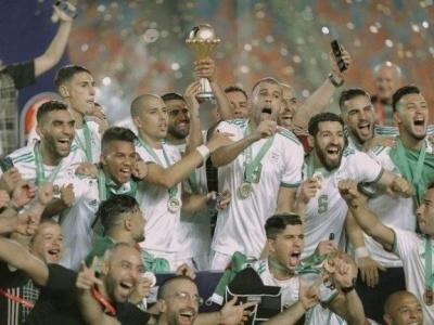 Les Fennecs champions d'Afrique : Pas de trêve footballistique pour Bensalah